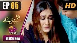 Pakistani Drama | Zara Sambhal Kay - Episode 65 | Aplus | Bilal Qureshi, Danial, Shehzeen, Michelle