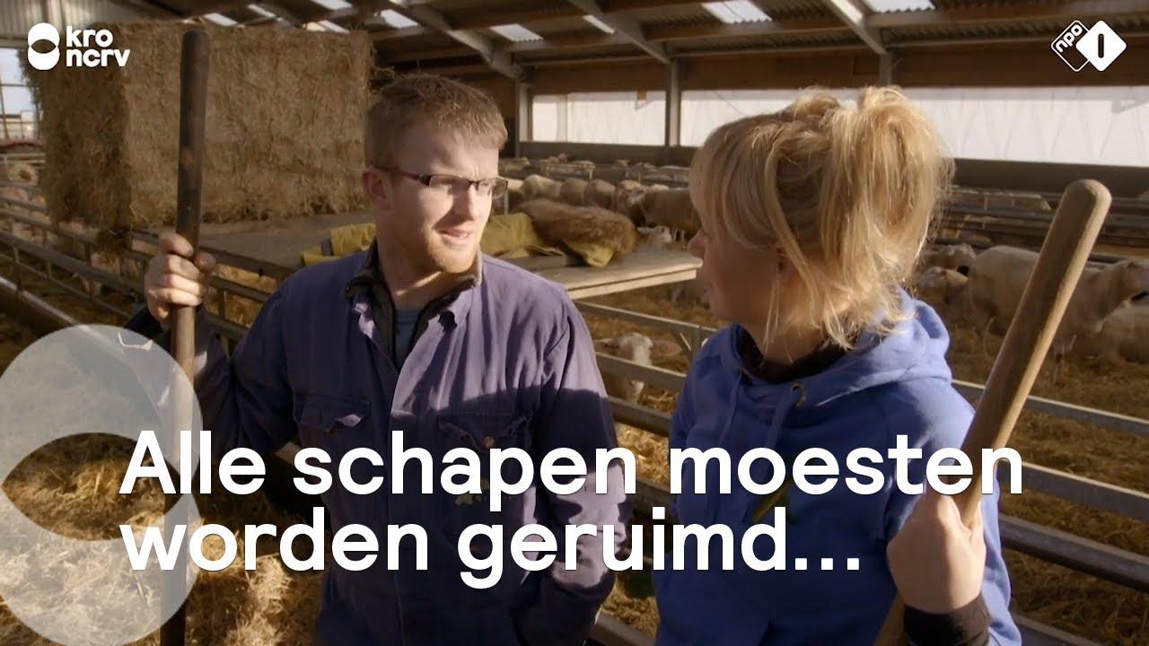 Download Op bezoek bij Boer Jan en Rianne op Texel   Onze boerderij