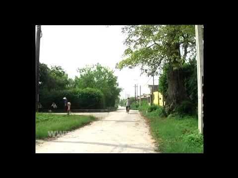 Thái Bình - Xây dựng nông thôn mới