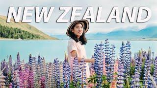 5 HARI TIDUR DI MOBIL - NEW ZEALAND VLOG (part 1) - #dimvlog 275