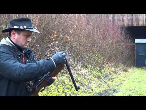 Luftgewehr Diana 65 Plinking 25m