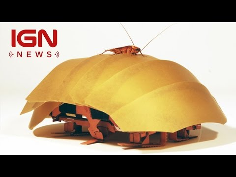 Meet the Robotic Cockroach that Could Save Your Life - IGN News