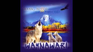 Chillout Easy Lounge Rhythm of the heartbeat - Waynawari