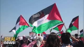 Israeli Forces Kill 4 Palestinians, Injure 40 on Israel