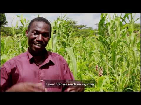 SWISSAID - Farmer Managed Seeds