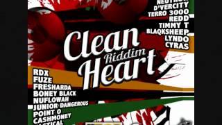 """""""Survivor"""" by Timmy T clean heart riddim .wmv"""