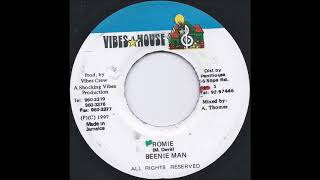Beenie Man -  Romie (Viny Side B Instrumental) 1996