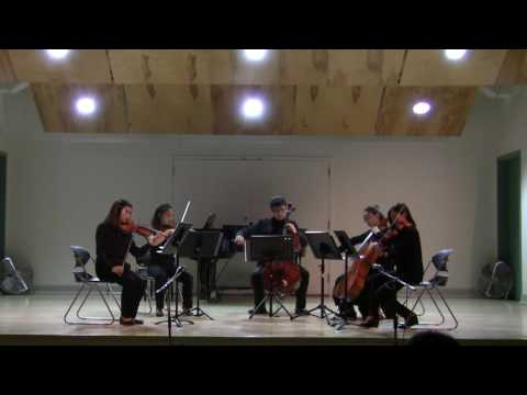 KPA 2017 Opus Youth Orchestra - Between Calm and Passion from the Whole Nine Yards