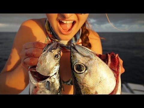 How BAD Can It Be?  TRASH Fish Taste Test! Bonito Vs. Blackfin Tuna!!! Catch Clean Cook) thumbnail