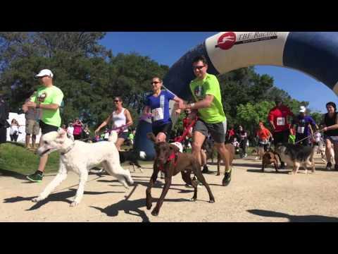 Mighty Dog 5k Run/Walk & Happy Kids Duathlon #4!!