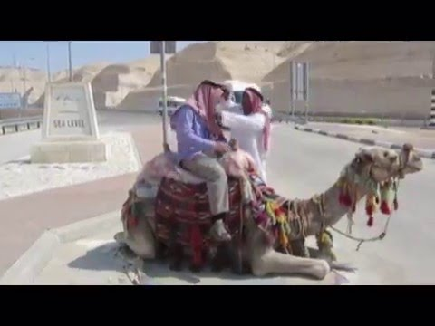 "A guy with ""Keffiyeh"" Arabic (traditional Arab headdress fashioned) Riding a camel in Israel"