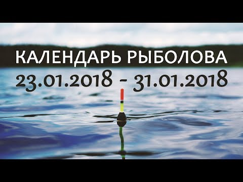 видео: Календарь рыболова 23.01-31.01.2018 от Аборигена
