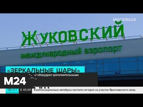 Аэропорт Жуковский закупит приборы для отпугивания птиц - Москва 24