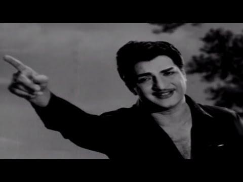Talla Pellama    Telugu Jaathi Video Song    NTR, Santha Kumari