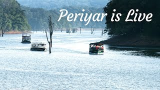 Periyar is live now - Visit Thekkady