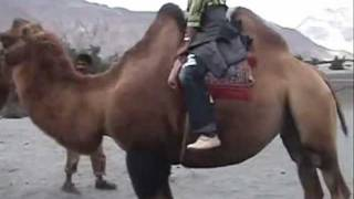 A passage to Ladakh thru DRAS- part 4.wmv