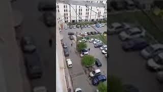 إطلاق الكلاب اليوم على الحراكيين في بئر مراد رايس العاصمة 😂😂😂