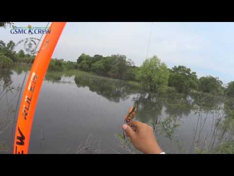 GSMC SNAKEHESD FISHING 20160527