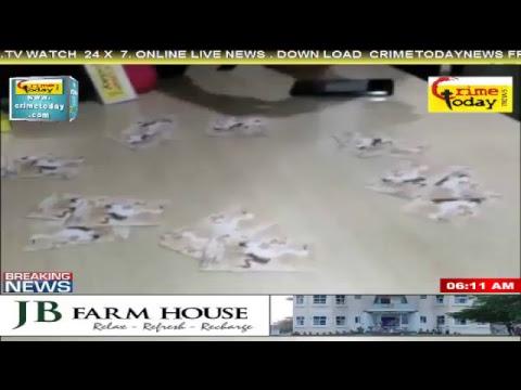 Crime Today News Live Stream
