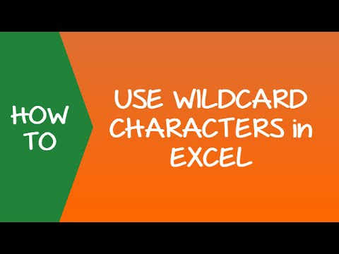 How to Use Wildcard Characters in Excel (Examples)