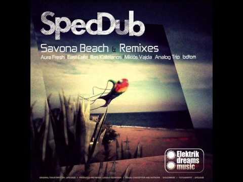 SpecDub - Savona Beach (Original Mix)