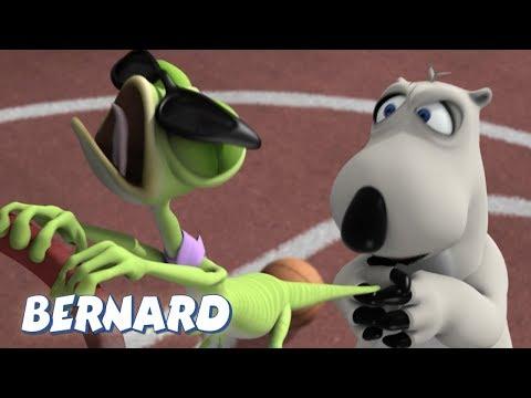 Bernard Bear   Basketball AND MORE   30 min Compilation   Cartoons for Children