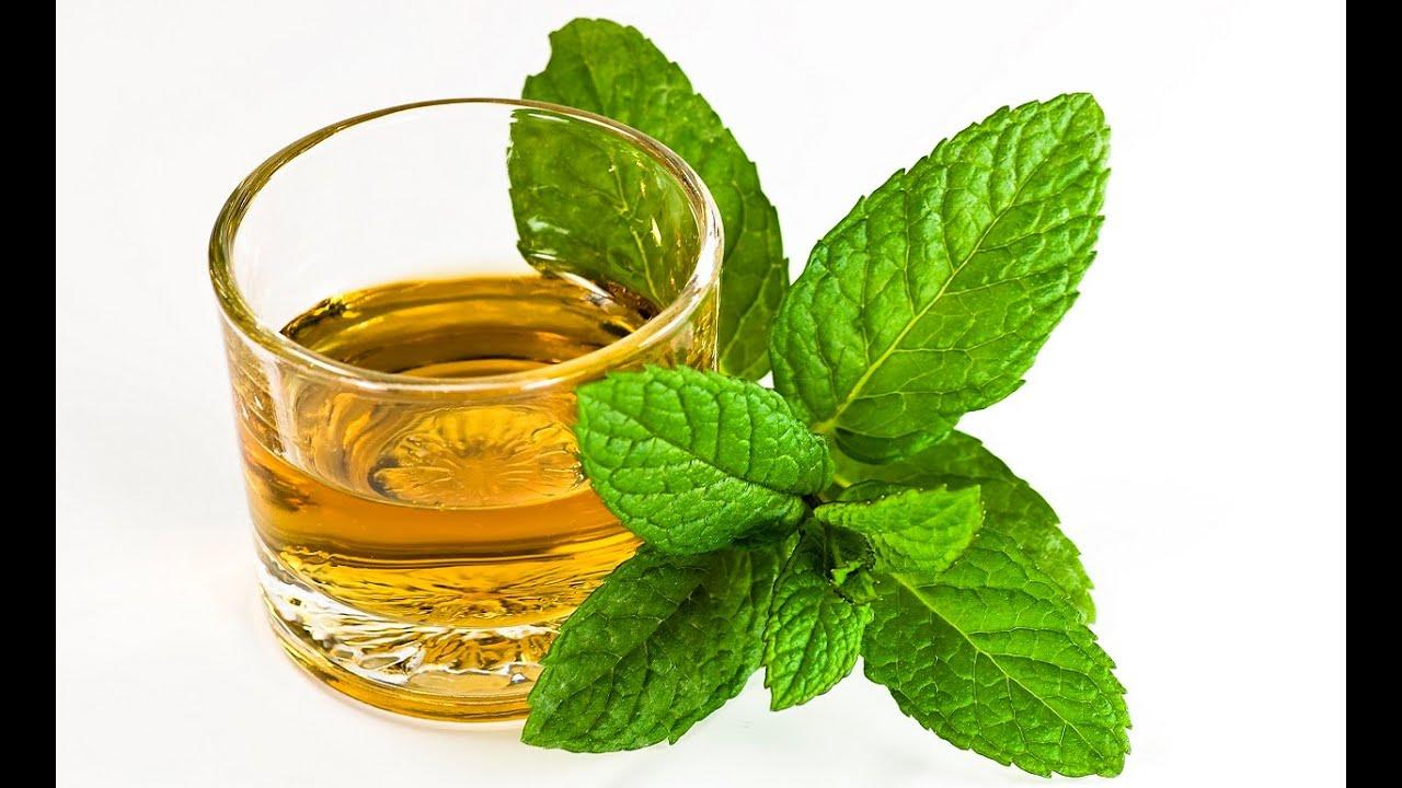 Usos del t de hierbabuena para la belleza y la salud for Como se planta la lavanda