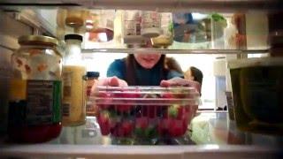 Die Reise der Erdbeeren