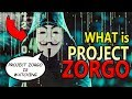 PROJECT ZORGO ☠️ 10 Things You NEED TO KNOW About The YOUTUBE HACKER GROUP Feat. The GAME MASTER ⚠️