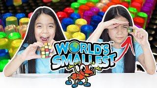 WORLD'S SMALLEST TOYS VS   Tran Twins