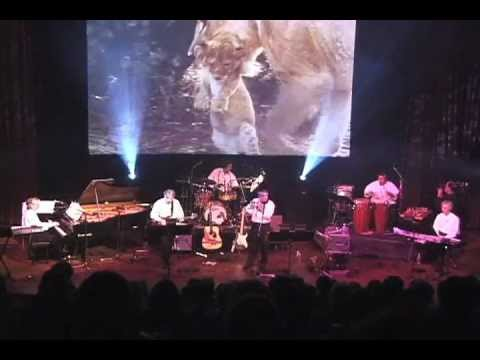 The Heart Of Africa by Hennie Bekker (Live!)