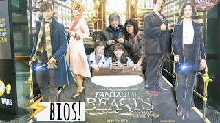 Naar Fantastic Beasts and Where to find them! Vlog 419 | Boncolor