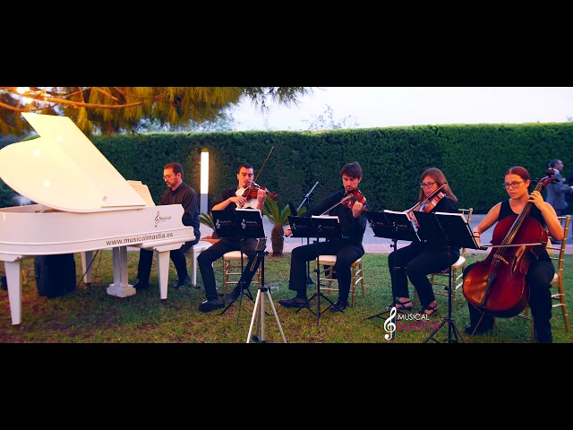 Yesterday The Beatles piano and string quartet cover