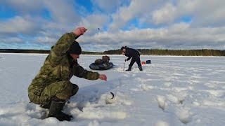 Пришли на лесное озеро и поймали рыбы Рыбалка в Карелии Рыбалка в заветном месте Как найти окуня