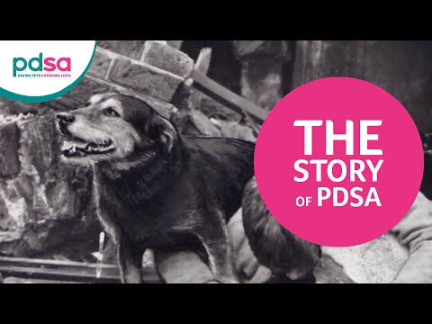 The Story of PDSA