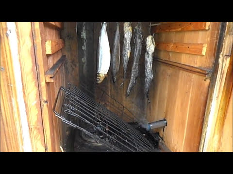 Коптильня  горячего-холодного копчения .My fishing .Smokehouse hot smoked .