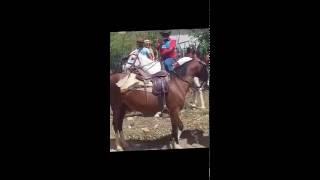 Repeat youtube video Geraldo Luis do Domingo Show montando no Cavalo, em visita ao mais velho vaqueiro do Brasil.