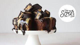 Chocolate Peanut Butter Cheesecake (raw & Vegan) - The Scran Line