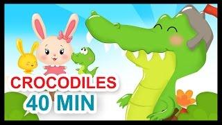 Ah les crocodiles et 40 min de comptines - Titounis