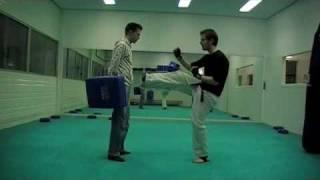 045-mae geri/front kick tutorial