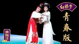 黄梅戏《红楼梦》1/2 【空中剧院 20170111】