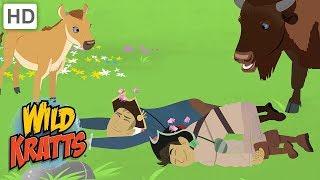 Wild Kratts - Chasing Food in the Animal Kingdom