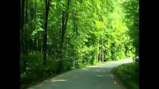 DOUGIE MACLEAN - CALEDONIA - CELTIC SPIRIT