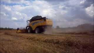 Žně/Žatva/Harvest Pšenice/Weat ozimné New Holland CX860 [HD]