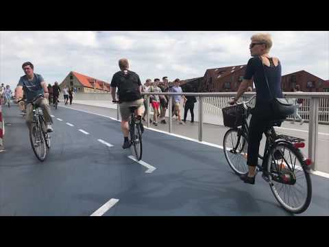 Cycling in Amsterdam and Copenhagen