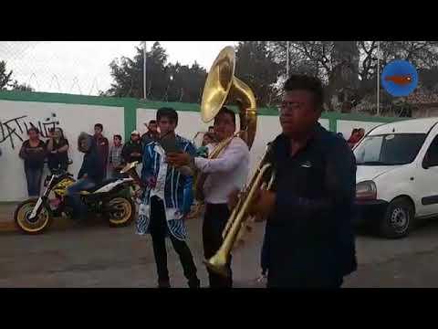 Carnaval Xaltocan 2018 [2]