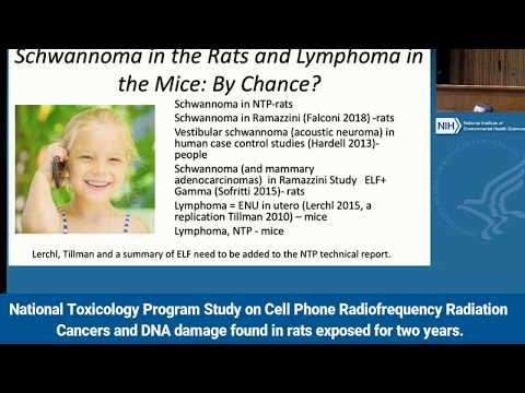 Comments on National Toxicology Program Study on Cell Phone Radiation Theodora Scarato
