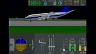 China Southern Airlines Flight 3456 (CAAC Animation)