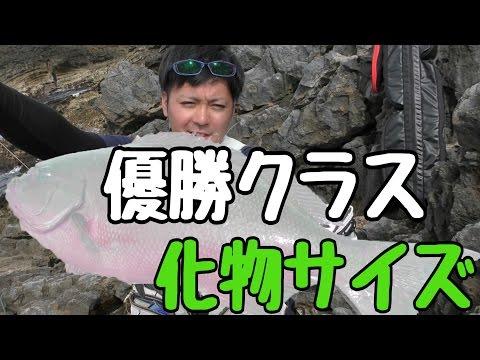 �幻�魚】長年狙����幻�魚�釣れ��優�クラス�サイズ】