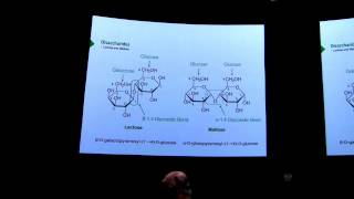 Carbohydrates II - Kevin Ahern's BB 450 Lecture #17 2016